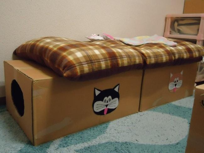 tunel de caixas de papelao para gato