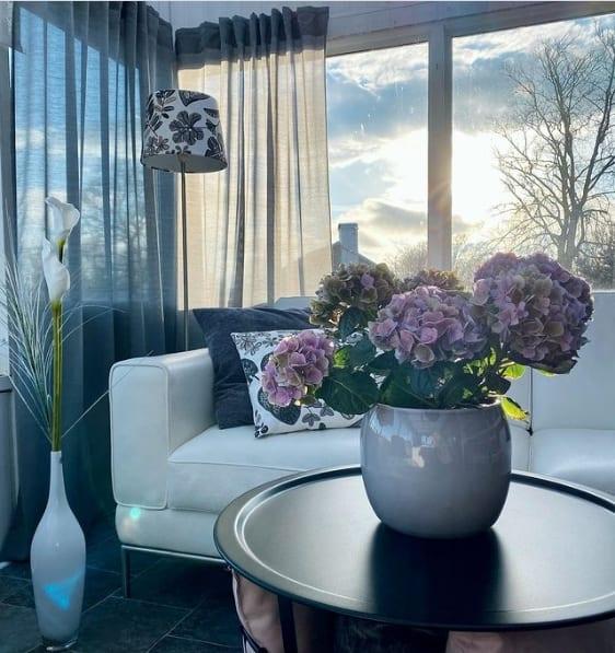 mesa de centro decorada com vaso de hortensia