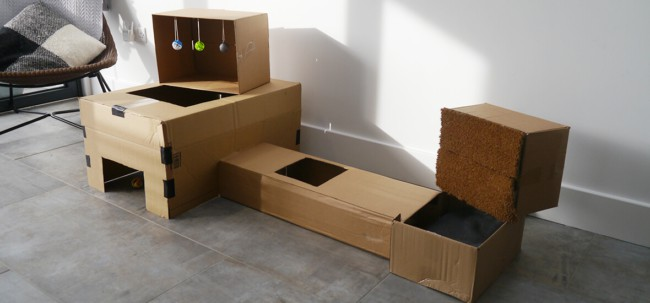 tunel de papelao para gatos com brinquedos