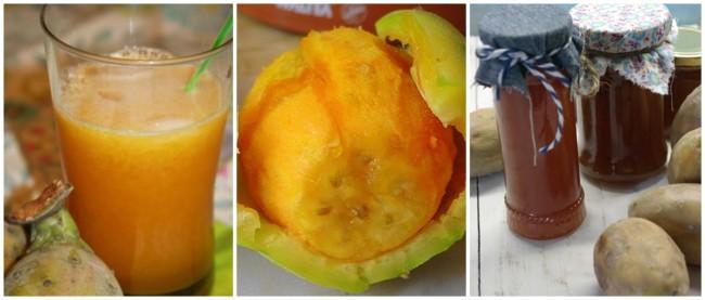 dicas para consumir figo da india