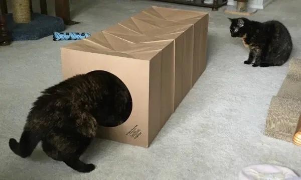tunel de papelao pequeno para gatos