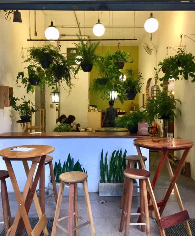 lanchonete rustica decorada com plantas