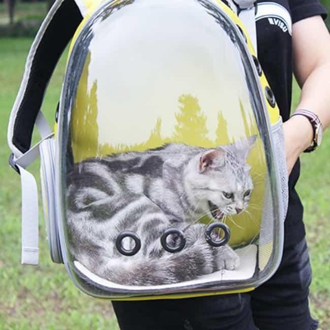 Ideia de mochila para gato