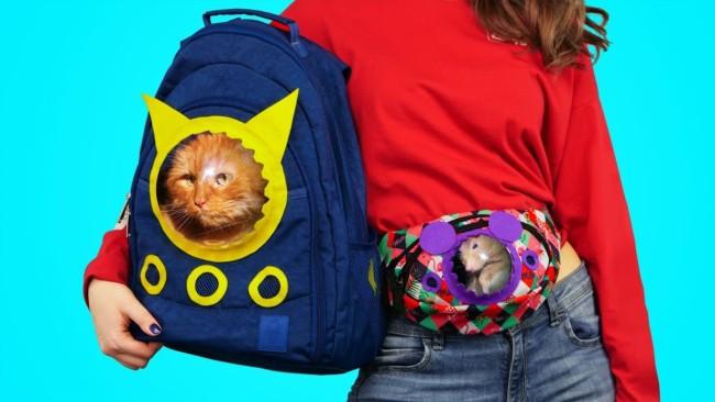 Modelo divertido de mochila para gatos