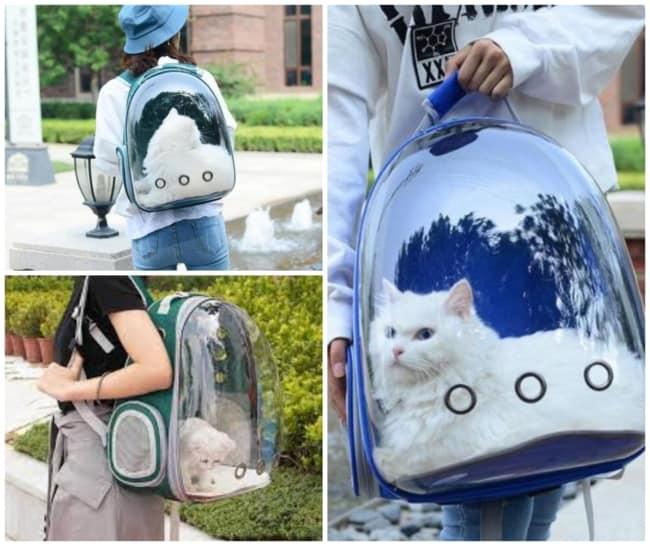 mochila para gato 1