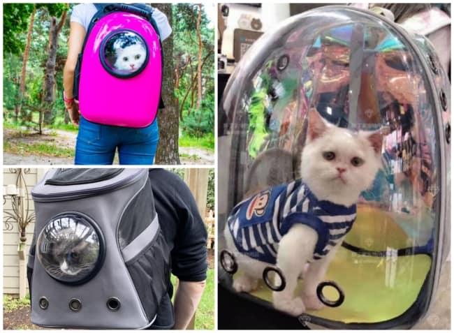 mochila para gato 2