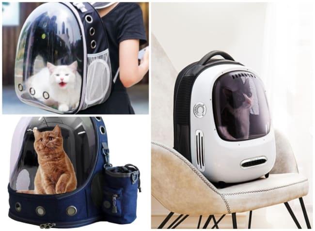 mochila para gato 3