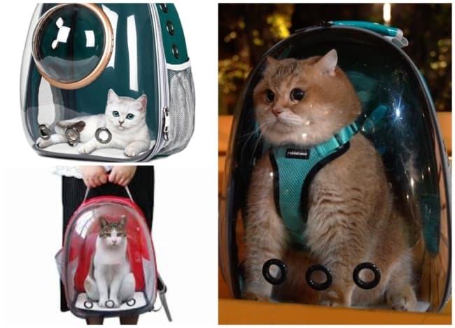 mochila para gato 4