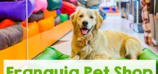 franquia pet shop