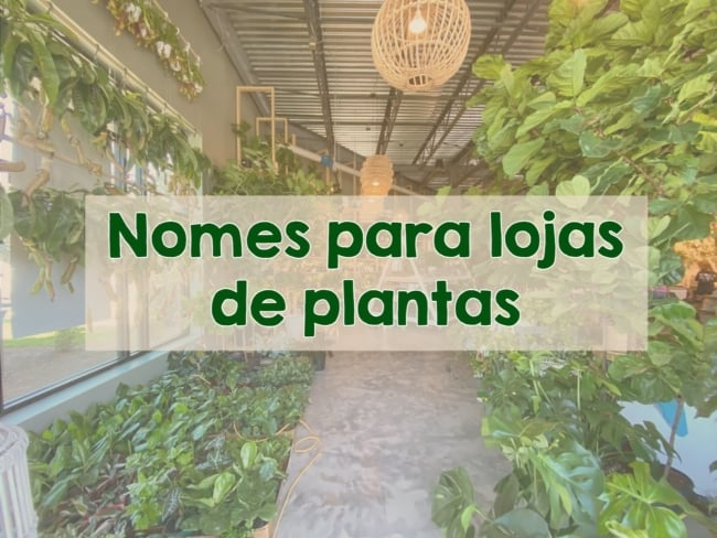 nomes para lojas de plantas