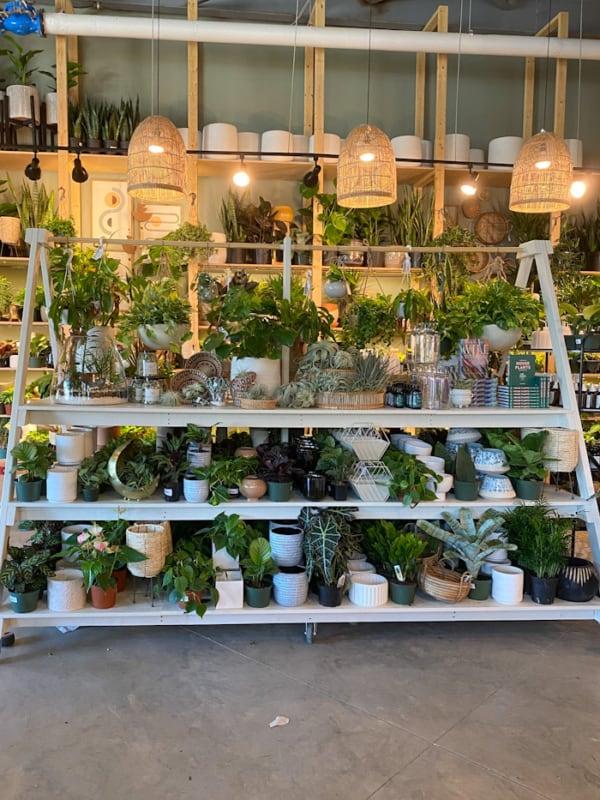 nomes simples para loja de plantas