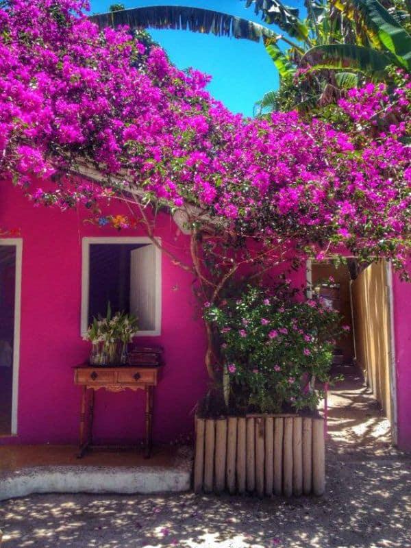 casa com pintura em cor magenta