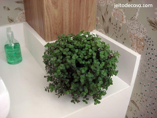 decoracao com planta natural no banheiro