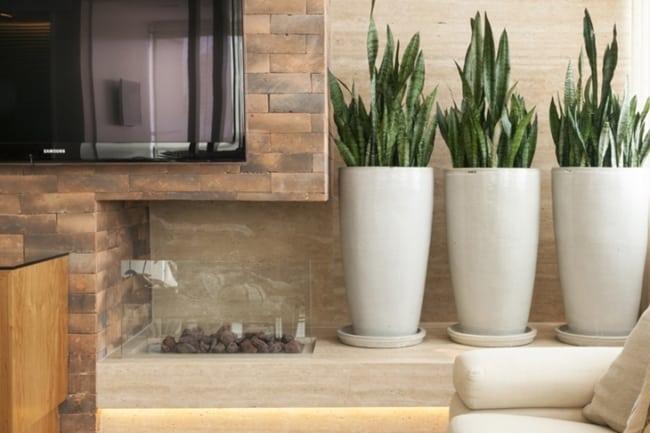 decoracao moderna com plantas para dentro de casa