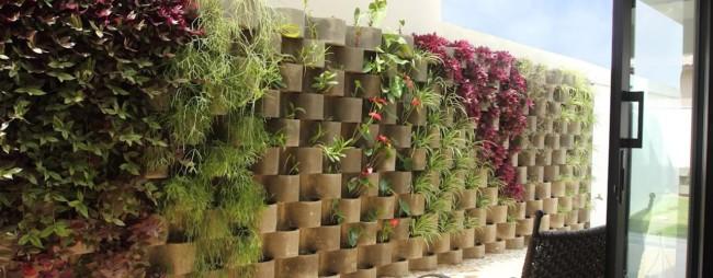 jardim na parede com barba de serpente
