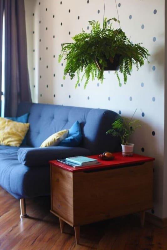 sala decorada com vaso suspenso de samambaia
