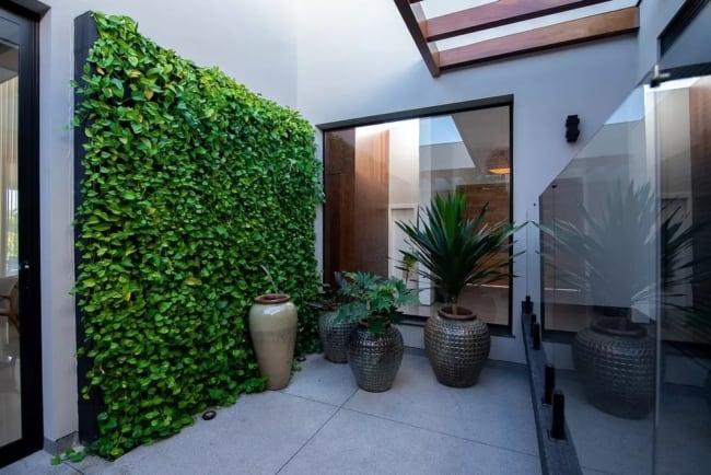 jardim vertical com folhagem pendente