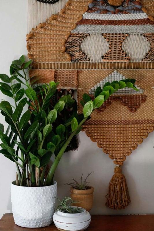 como usar planta zamioculca na decoracao