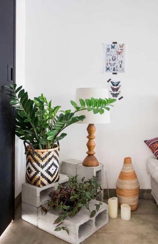 decoracao com planta de sombra